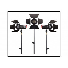 Студийный свет Aputure Amaran LS-mini 20 flight kit(ddc) Комплект постоянного света со стойками