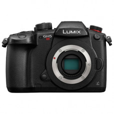 Фотоаппарат Panasonic Lumix GH5S Body
